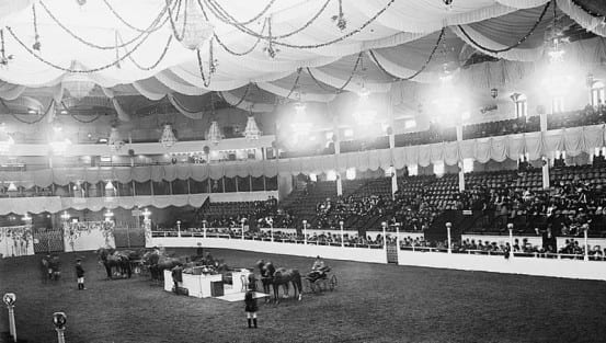 Judging at the National Horse Show