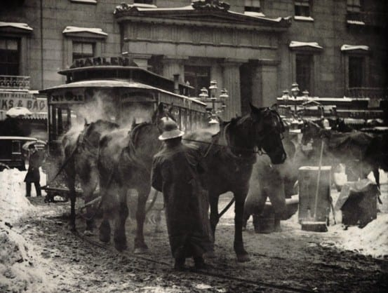 Alfred Stieglitz, The Car Horses