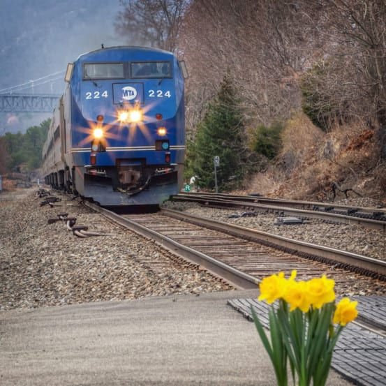 Springtime on Metro North