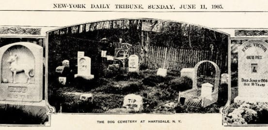 Article about the Hartsdale Pet Cemetery
